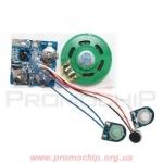 Музыкальный модуль BRC-11AP/BP