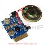 Музыкальный модуль BIR-40DMC